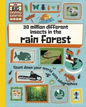 30 Million Different Insects in the Rainforest