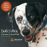 Dogtown | Bob Best Friends Animal Society ; Somerville |