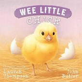 Wee Little Chick | Lauren Thompson |