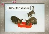 Time for Dinner, Level