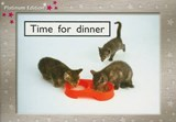 Time for Dinner, Level | Various |