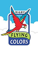 Flying Colors Teacher's Handbook, Silver Level |  |