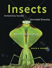 Insects - Evolutionary Success, Unrivaled Diversity and World Domination