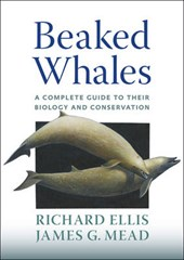 Beaked Whales - A Complete Guide to Their Biology and Conservation