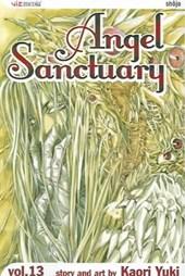 Angel Sanctuary, Vol. 13