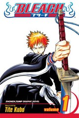 Bleach, Volume | Tite Kubo |