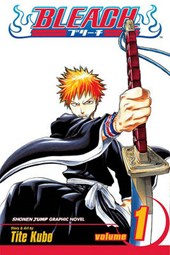 Bleach, Volume