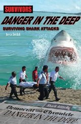 Danger in the Deep | Joyce Zoldak |