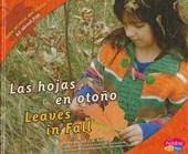 Las hojas en otono/ Leaves in Fall