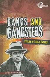 Gangs and Gangsters