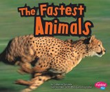 The Fastest Animals | Catherine Ipcizade |