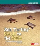 Sea Turtles' Race to the Sea