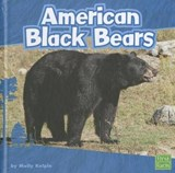 American Black Bears | Molly Kolpin |