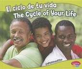 El ciclo de tu vida / The Cycle of Your Life
