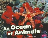 An Ocean of Animals | Janine Scott |