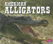 American Alligators | Steve Potts & Gail Saunders-Smith |