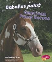 Caballos paint / American Paint Horses