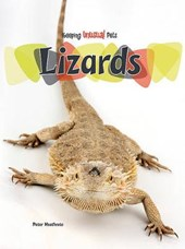 Lizards | Peter Heathcote |