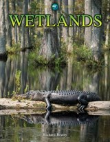 Wetlands | Richard Beatty |