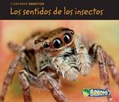 Los sentidos de los insectos / Bug Senses