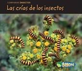 Las crias de los insectos / Bug Babies