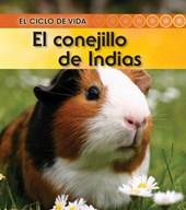 El conejillo de Indias / Guinea Pig
