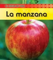 La manzana / Apple