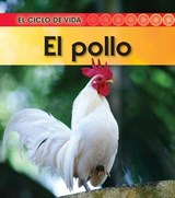 El pollo / Life Cycle of A Chicken | Angela Royston |