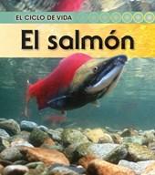 El salmon / Salmon