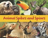 Animal Spikes and Spines | Rebecca Rissman |