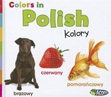 Colors in Polish | Daniel Nunn |
