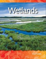Wetlands | Yvonne Franklin |