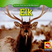 Elk | JoAnn Early Macken |