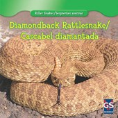 Diamondback Rattlesnake / Cascabel Diamantada