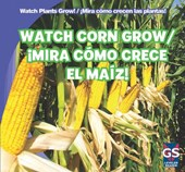 Watch Corn Grow!/Mira Como Crece El Maiz!