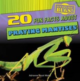 20 Fun Facts About Praying Mantises | Adrienne Houk Maley |