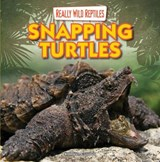 Snapping Turtles | Kathleen Connors |