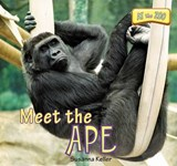 Meet the Ape | Susanna Keller |