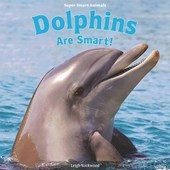 Dolphins Are Smart!