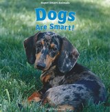 Dogs Are Smart! | Leigh Rockwood |