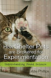 How Shelter Pets Are Brokered for Experimentation