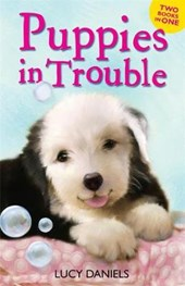 Animal Ark: Puppies in Trouble