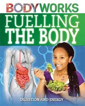 BodyWorks: Fuelling the Body: Digestion and Energy