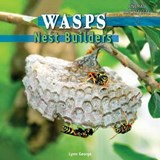 Wasps | Lynn George |