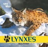 Lynxes