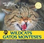 Wildcats/Gatos Monteses