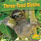 Three-Toed Sloths | Willow Clark |