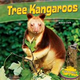 Tree Kangaroos | Willow Clark |