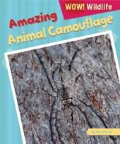 Amazing Animal Camouflage