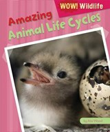 Amazing Animal Life Cycles | Alix Wood |